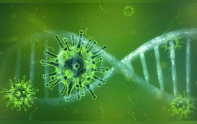Científicos de la UNAM decifran el genoma de variantes del virus SARS-CoV-2